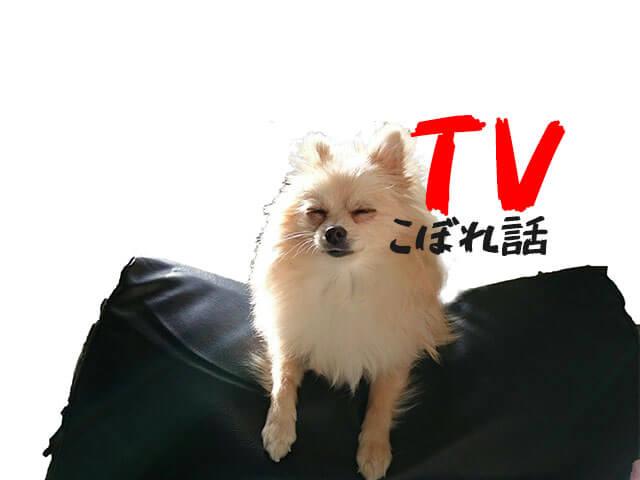 【2分で復習】 7月3日のTVからこぼれた話