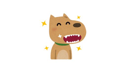 【プ女子の観戦日記】中邑真輔が犬に噛まれたワン
